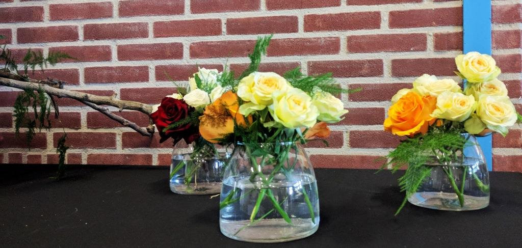 Interplant Roses breeder of various rose varieties