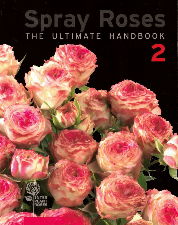 Interplant Roses B.V. Global leader in breeding spray rose varieties