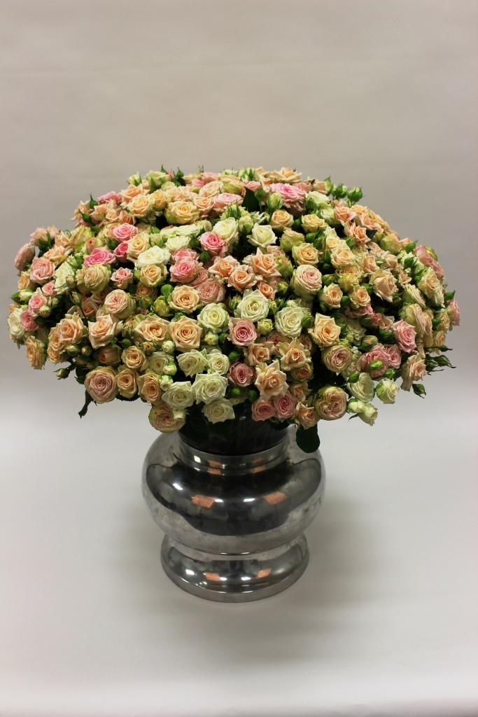 Voorn Rozen Spray rose mix