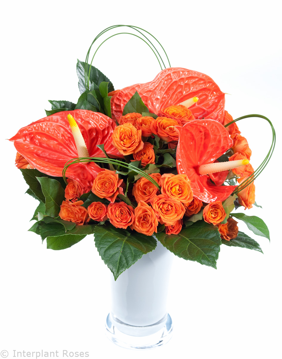 wedding bouquet spray roses