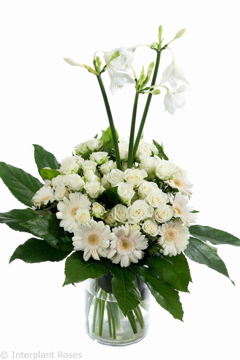 spray rose arrangements white