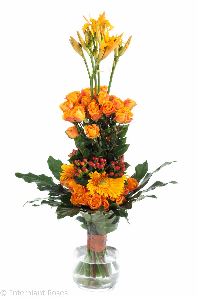 spray roses in vase
