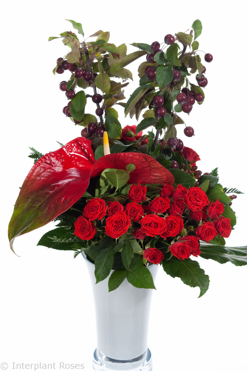 red spray roses in vase
