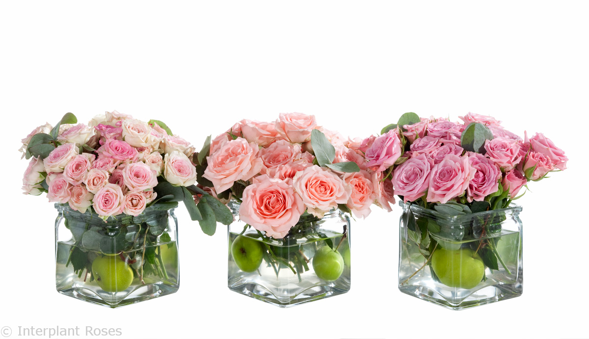 small spray roses arrangements
