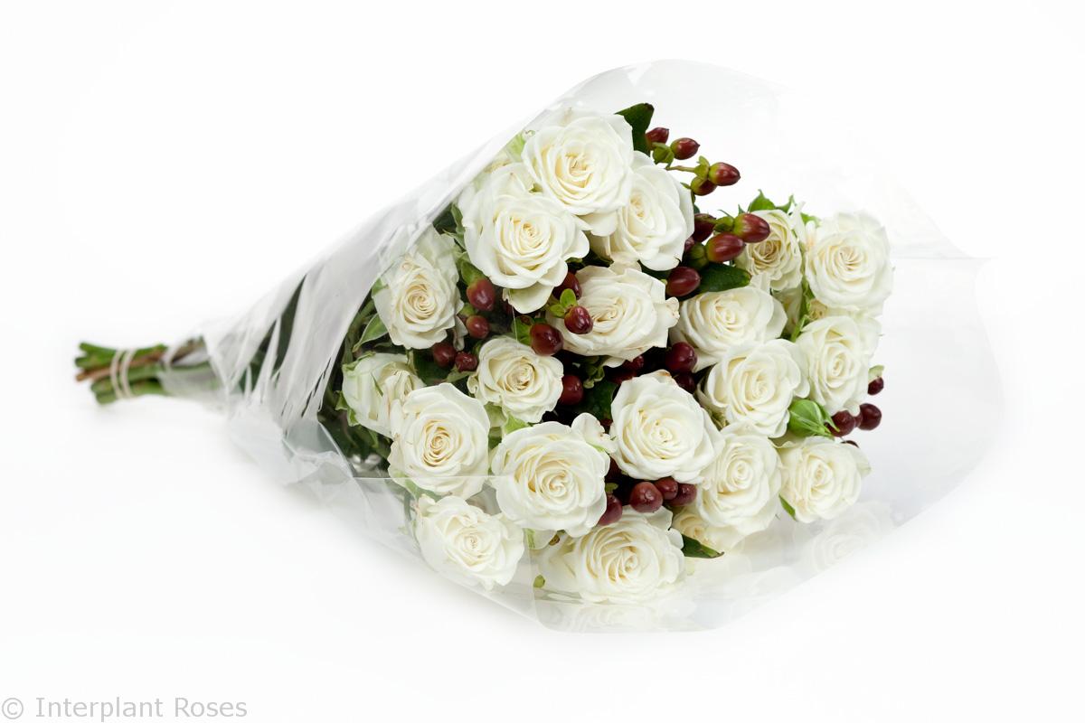 white spray rose presentation