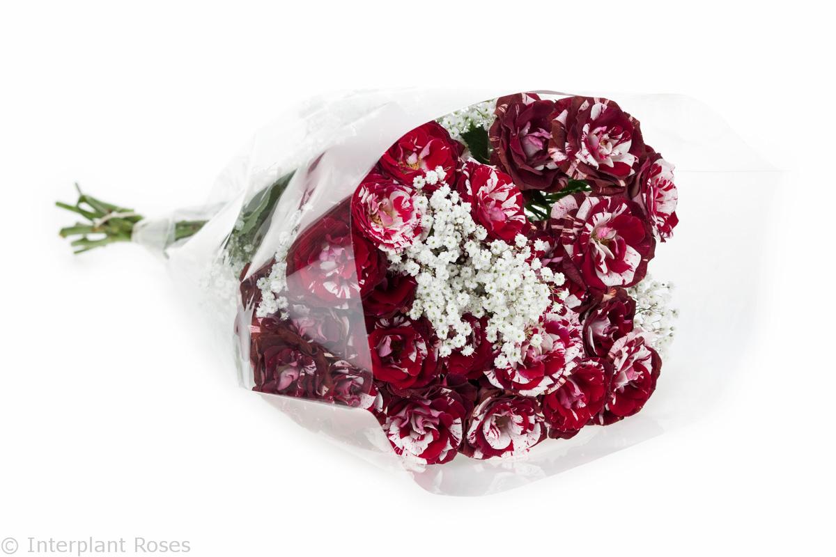 deep red spray rose bouquet