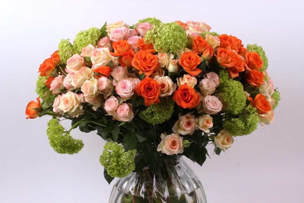 Spray rose arrangement Interplant variety Babe, Alexine