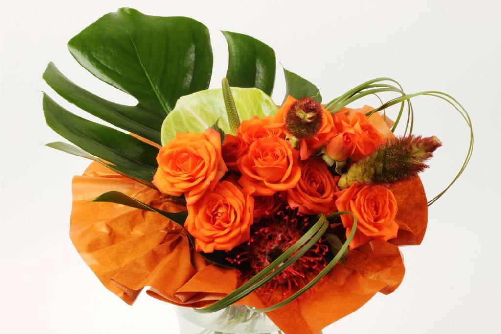 Spray rose arrangement Interplant variety Babe