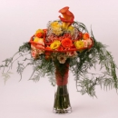 Spray rose arrangement Interplant variety Babe, Elevation, Rosanella