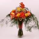Spray rose arrangement Interplant variety Babe, Elevation, Rosanella