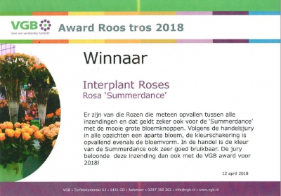 Interplant winner of VGB Award 2018