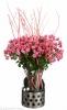 mono bouquet spray roses