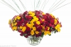 mixed spray roses in 1 arrangement