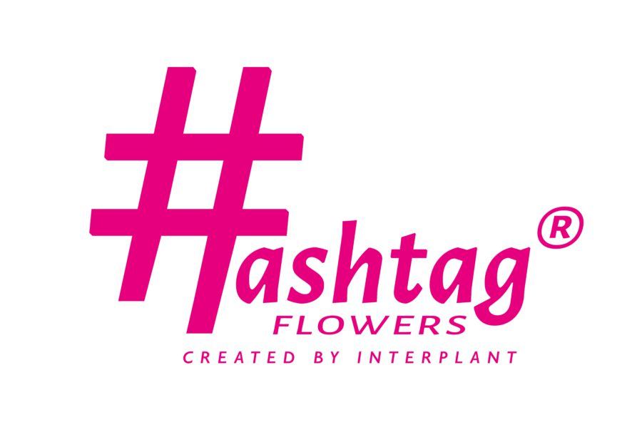 Logo #ashtag flowers